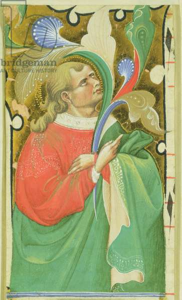 Apostle (vellum)