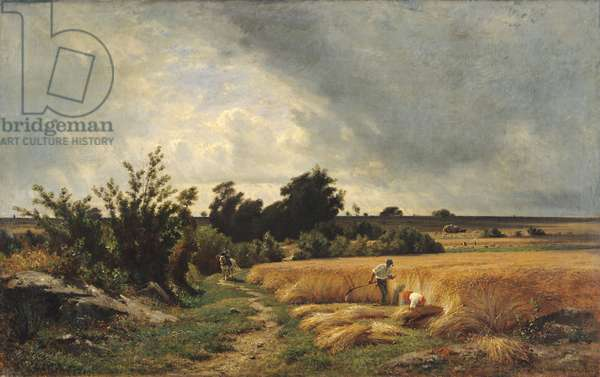 The Plateau of Ormesson - A Path through the Corn (oil on canvas)