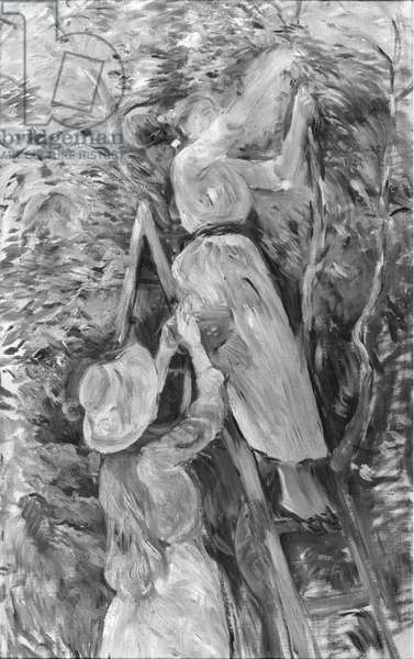 Picking cherries, 1891 (oil on canvas) (see also 18907) (b/w photo)