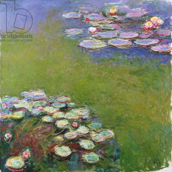 Waterlilies, 1914-17 (see detail 414409) (oil on canvas)