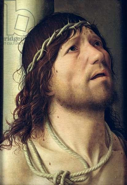 Christ at the Column, c.1475 (oil on panel) (detail)