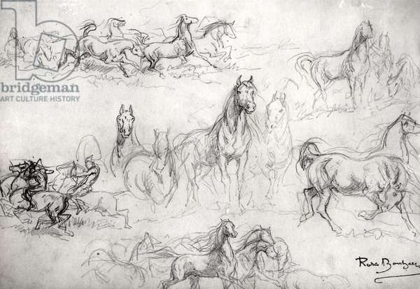Study of Horses (pencil on paper) (b/w photo)