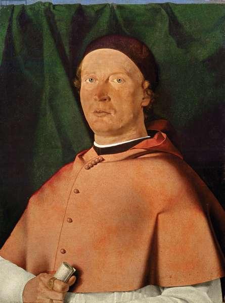 Portrait of Bishop Bernardino de' Rossi, c.1505 (oil on panel)