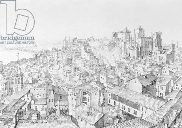 View of the Town of Avignon and its surroundings (pen and ink wash on paper)