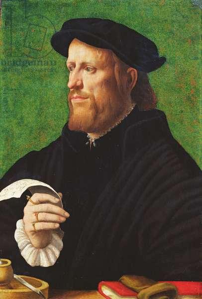 Portrait of a man, 1575 (oil on wood)