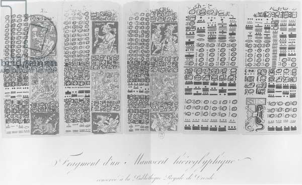 Copy of a fragment of a Mayan manuscript depicting astronomical tables with the eclipses (litho) (b/w photo)