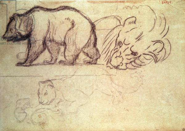 A bear walking, the head of a lion and a leopard attacking an animal (charcoal & pencil on paper)