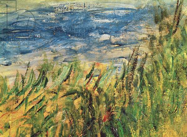 The Banks of the Seine at Champrosay, detail of the water and grass at the centre of the painting, 1876 (oil on canvas) (detail of 38573)