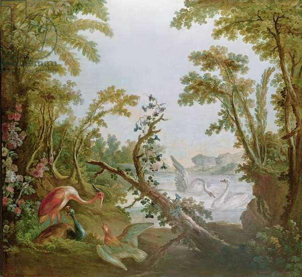 Lake with swans, a flamingo and various birds, from the salon of Gilles Demarteau, c.1750-65 (oil on canvas)