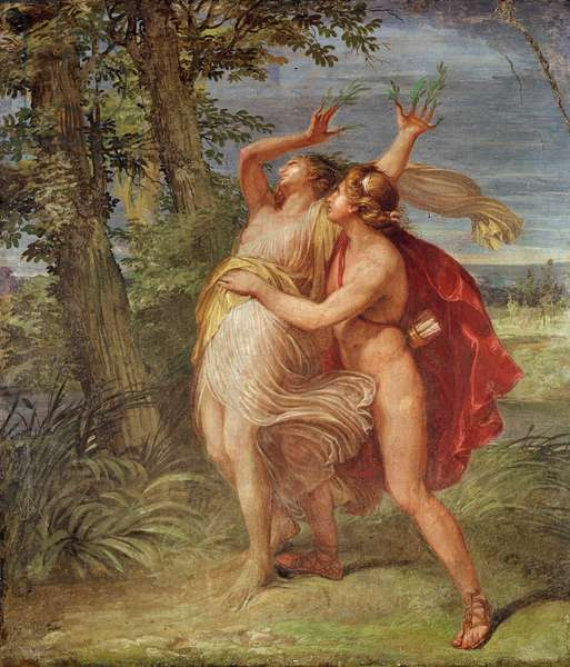 Apollo and Daphne (oil on canvas)