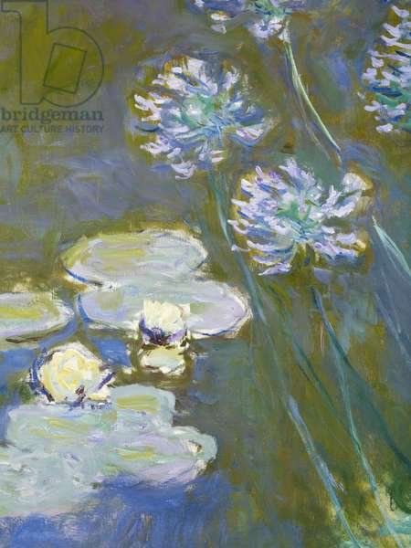 Waterlilies and Agapanthus, 1914-17 (detail of 82323) (oil on canvas)