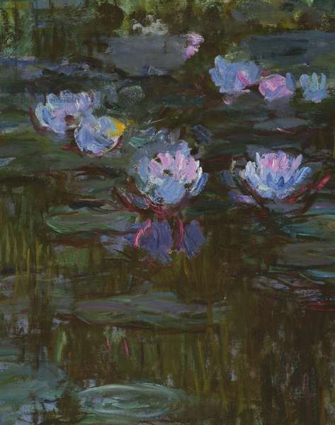 Waterlilies, 1914-17 (detail of 158601) (oil on canvas)
