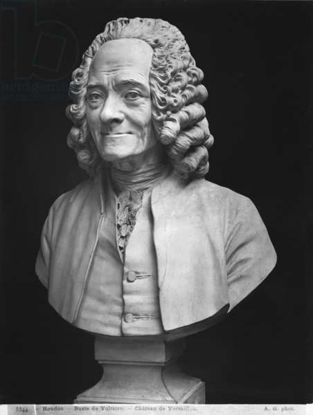 Bust of Voltaire (marble) (b/w photo)