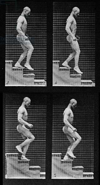 Man descending stairs, from 'Animal Locomotion', 1887 (b/w photo) (detail of 425605)