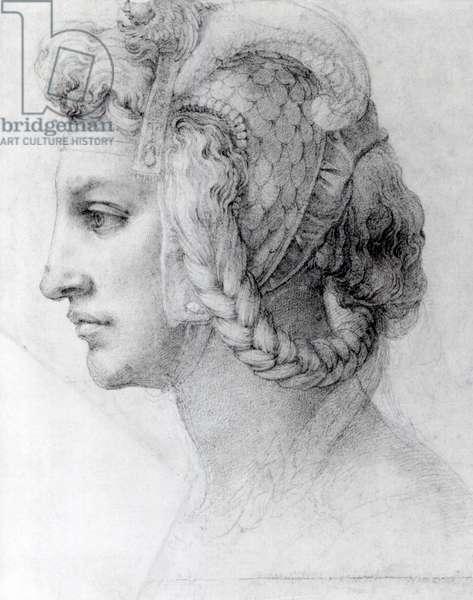Ideal Head of a Woman, c.1525-28 (black chalk on paper) (b/w photo)