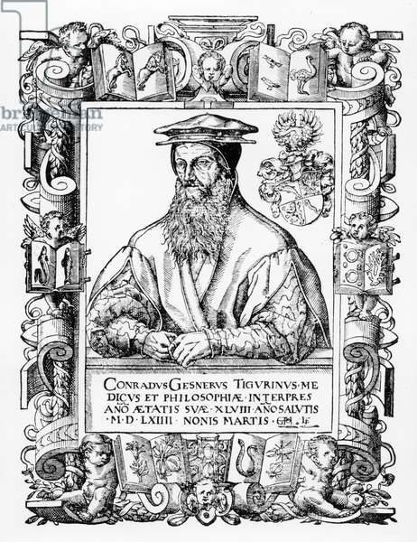 Conrad Gesner (engraving)