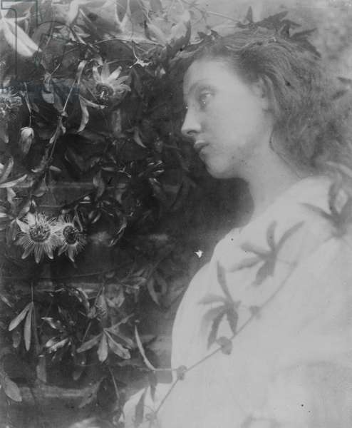 Illustration for the poem 'Maud' by Alfred, Lord Tennyson, 1865 (albumen print)