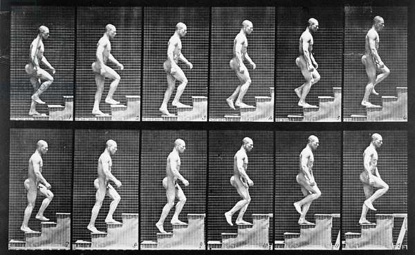 Man ascending stairs, from 'Animal Locomotion', 1887 (b/w photo)