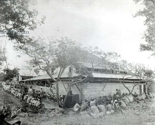 Plantation workers arrived from India at the Depot, Port of Spain, Trinidad, c.1891 (b/w photo)