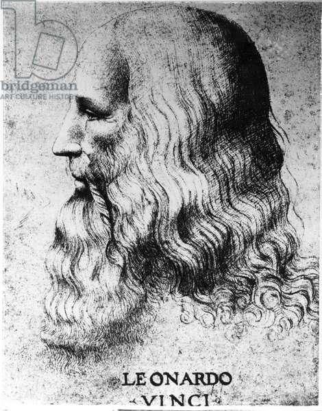 Portrait of Leonardo da Vinci (1452-1519), engraved by Francesco Bartolozzi (c.1727-1815) (engraving) (b/w photo)