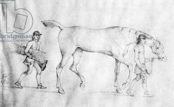 Horse and Grooms, 1754 (pencil on paper)
