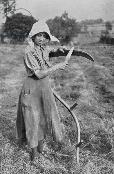 Harvesting - Member of the Leicester Women's Volunteer Reserve helping a farmer, War Office photographs, 1916 (b/w photo)