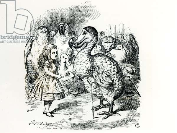 Alice meets the Dodo, illustration from 'Alice's Adventures in Wonderland', by Lewis Carroll, 1865 (engraving) (b&w photo)