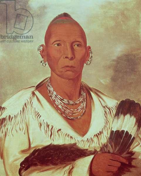 Portrait of Black Hawk, Indian Chief (colour litho)