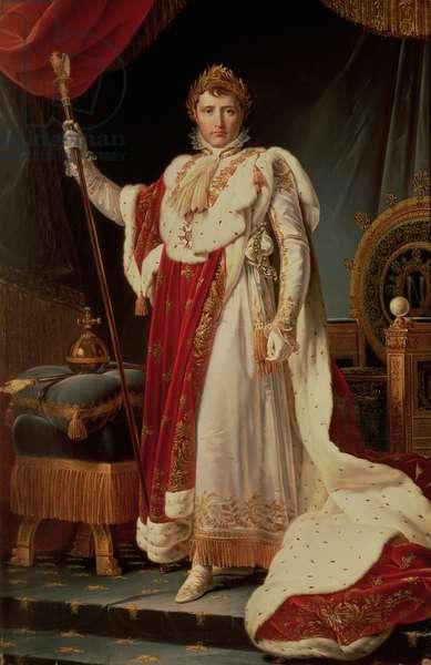 Napoleon in Coronation Robes, c.1804
