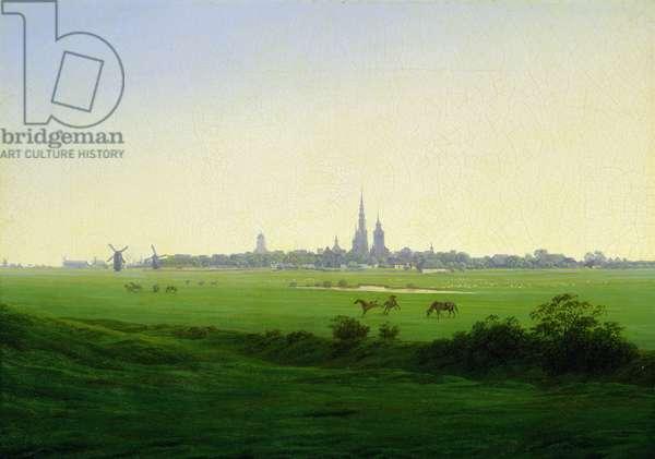 Meadows near Greifswald (oil on canvas)