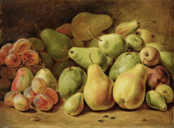 Fruit Still Life (oil on panel)