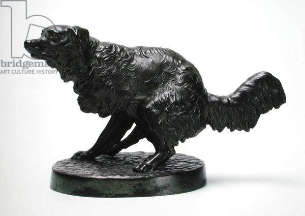 Long haired hunting dog, 1846 (bronze)