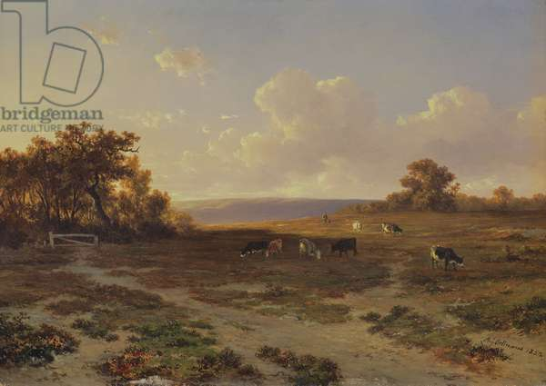 Heath Landscape with Cows, 1852 (oil on panel)
