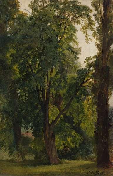 Wood in Konigswusterhausen (oil on canvas laid down on paperboard)