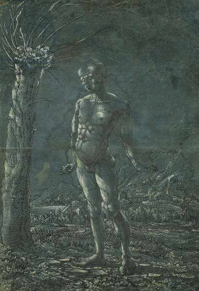 Standing nude man in a landscape, c.1512 (pen and black ink with white highlighting on paper)