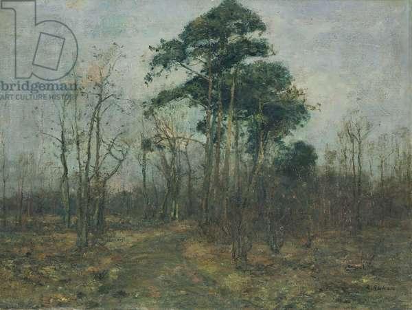 Park Landscape: Forest in Spring (oil on canvas)