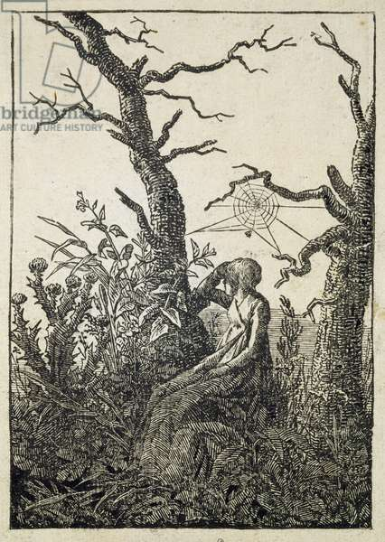 The Woman with a Spider's Web in the middle of Leafless Trees (woodcut)