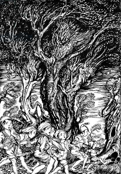 'The Arthur Rackham Fairy Book'