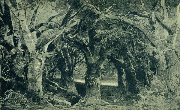 Richard Wagner 's Parsifal Act I Scene I