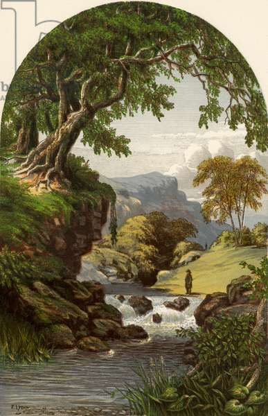 'The Rivulet' by William Cullen Bryant