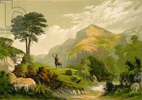 'Address to a Wild Deer' by Wilson