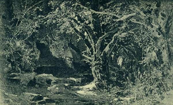Richard Wagner 's Siegfried Act II
