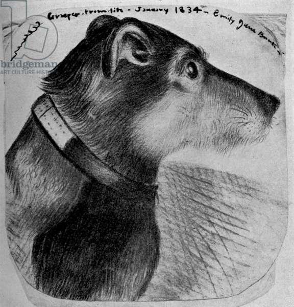 Charlotte Brontë's dog Grasper