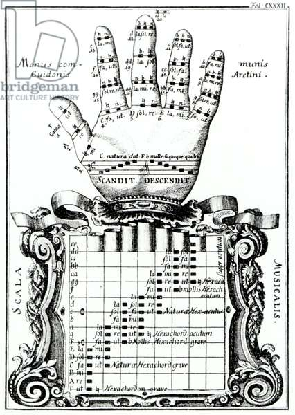 The Guidonian hand -