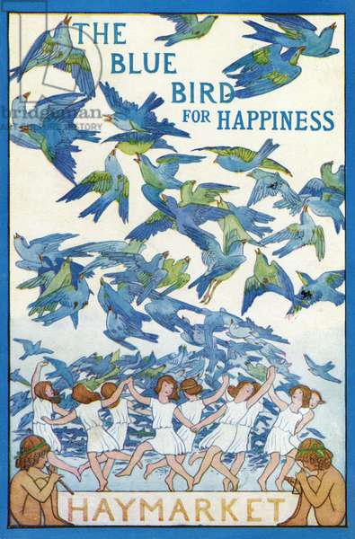'The Blue Bird for Happiness