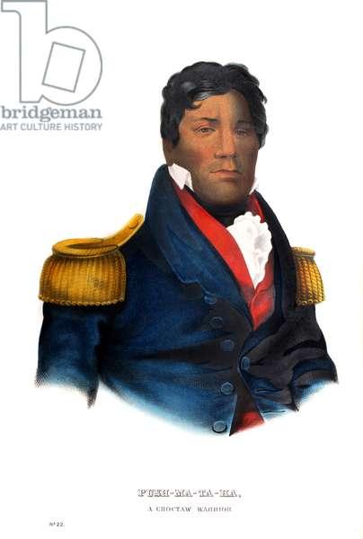 Pushmataha, a Choctaw warrior