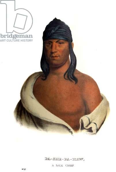 Pashepahaw ('The Stabber'), a Sauk chief