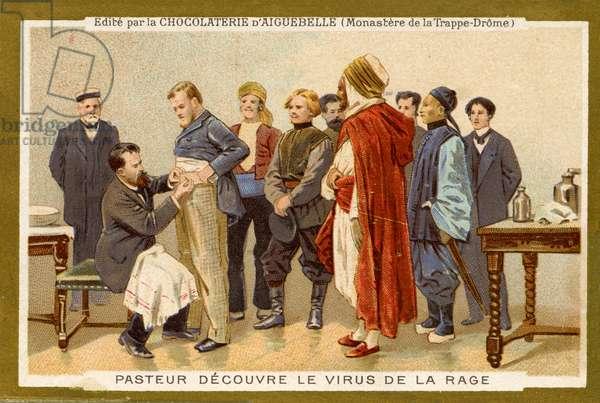Louis Pasteur discovers the rabies virus