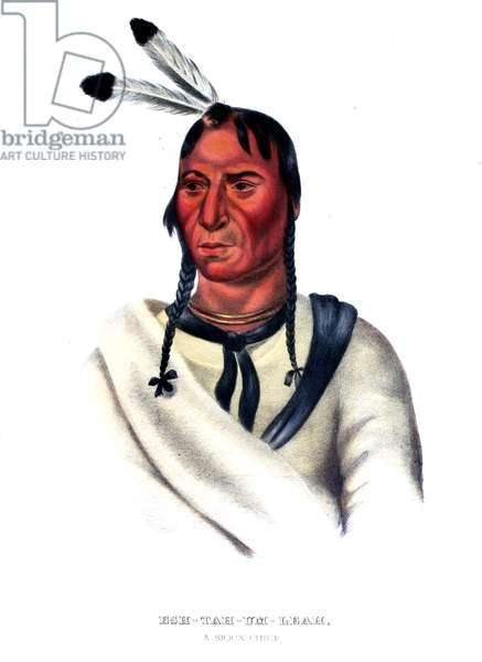 Eshtahumbah (Sleepy Eyes), a Sioux Chief