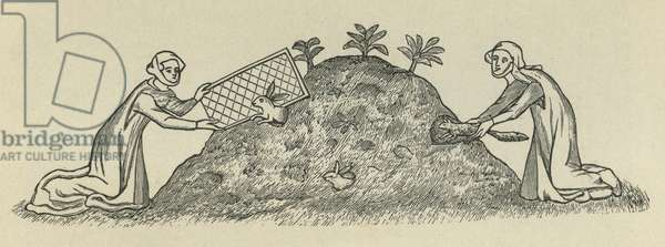 Serf catching rabbits